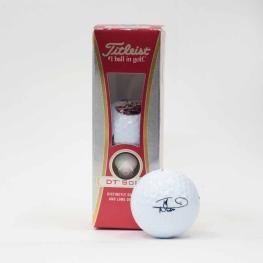 Iron Maiden, pelotas de golf 2013